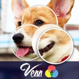 Venn Dogs: Jigsaw Puzzle