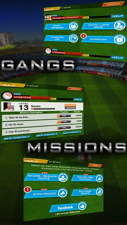 World Cricket Championship Lt screenshot-1