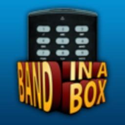 RealBand Remote