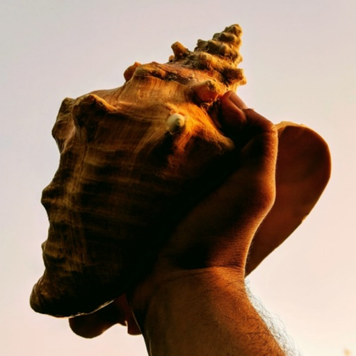 Conch Rule
