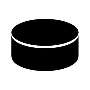 Hockey Scorebook + Stats