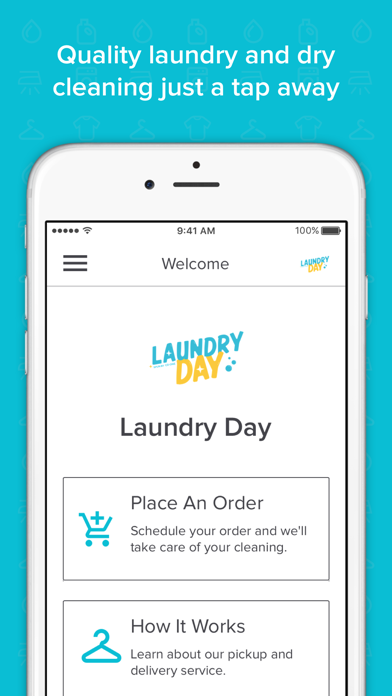 Laundry Day Delivered screenshot one