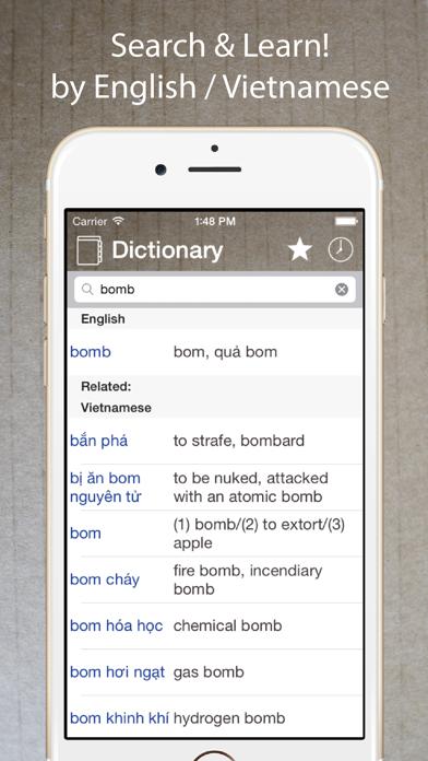 Vietnamese English Dictionary* screenshot one
