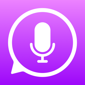 iTranslate Voice Productivity app