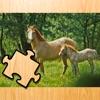 馬仔馬やポニーとの冒険のパズルゲーム:楽しく学ぶための無料の子供のゲーム