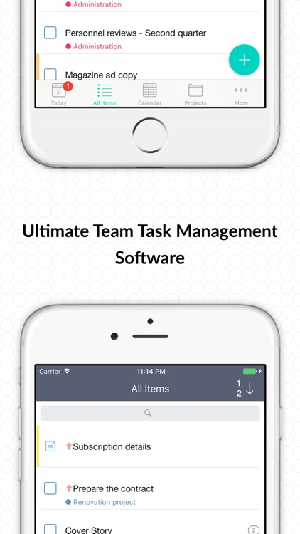 Hitask - Team Project Management