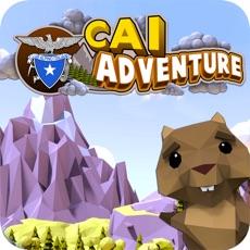Activities of CAI Adventure