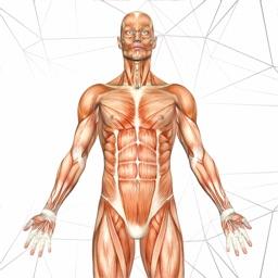 Anatomy AR book