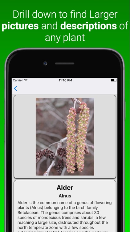Plant Dictionary Pro screenshot-1