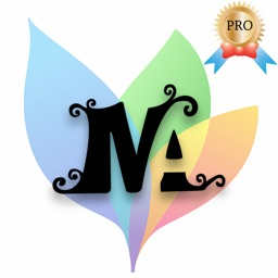 Name Art Gallery - Pro