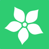 C.Y.borg's Neural Net, LLC - Mouse Memo Flower & Garden artwork