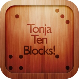 Tonja Ten Blocks!