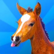 Jumpy Horse Breeding