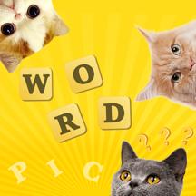 5 Pics 1 Word