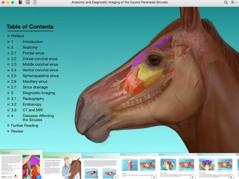 Anatomy And Diagnostic Imaging Of The Equine Paranasal Sinuses By