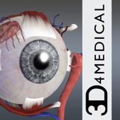 Essential Eye