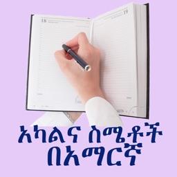 Amharic - Human Body