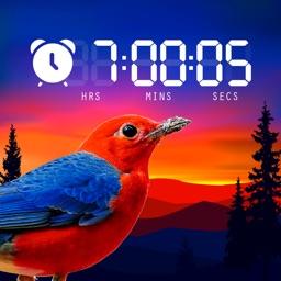 Alarm Clock - nature sounds