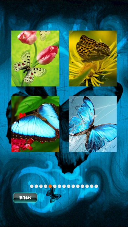 Butterfly Jigsaw screenshot-1