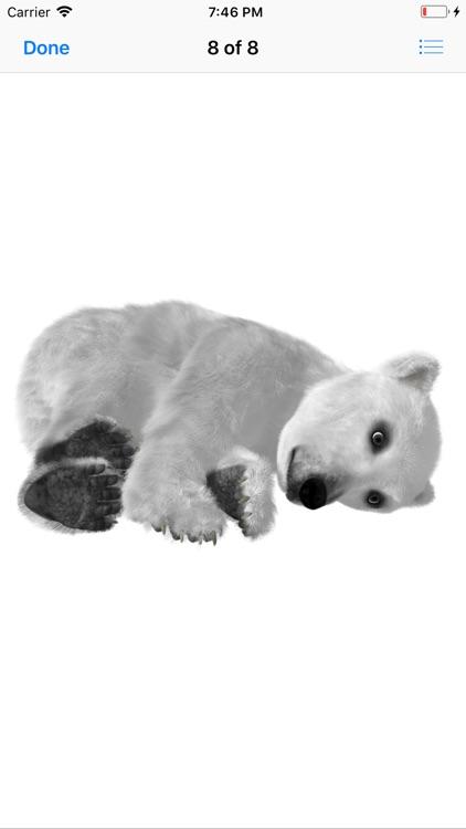 Bear Stickers screenshot-9