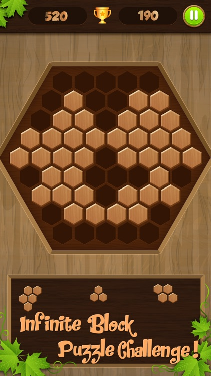 Wooden Puzzle Block Jigsaw screenshot-3