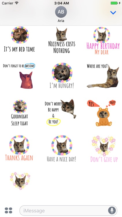 Chat With Cute Cat Sticker