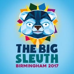 The Big Sleuth 2017