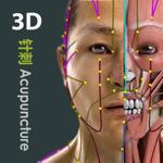 Visual Acupuncture 3D