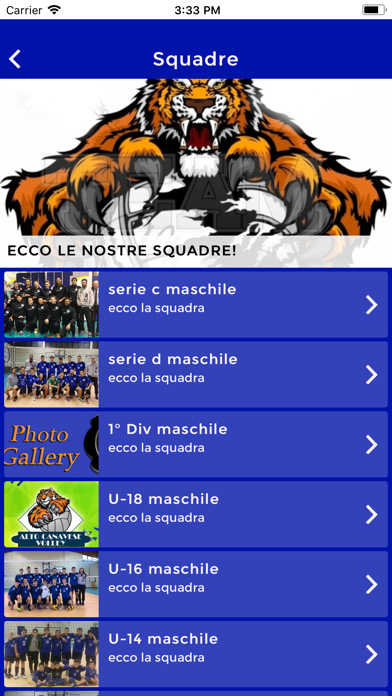 Screenshot of A.C.Volley3