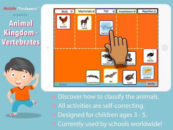 Animal Kingdom (Vertebrates) Screenshots
