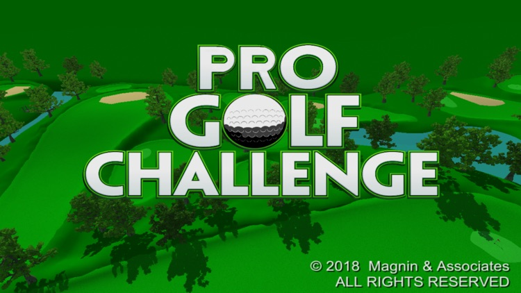 Pro Golf Challenge screenshot-0