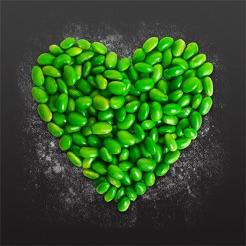 Wonderful Green Kitchen 4+ Amazing Ideas