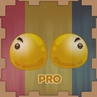 Mirror World Adventure Pro