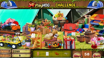 Camp Out Hidden Objects Games