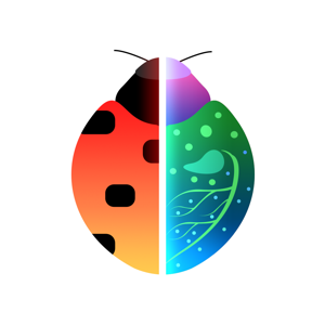 Insect Identification app