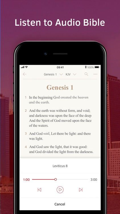Light Bible: Verses, Audio screenshot-3