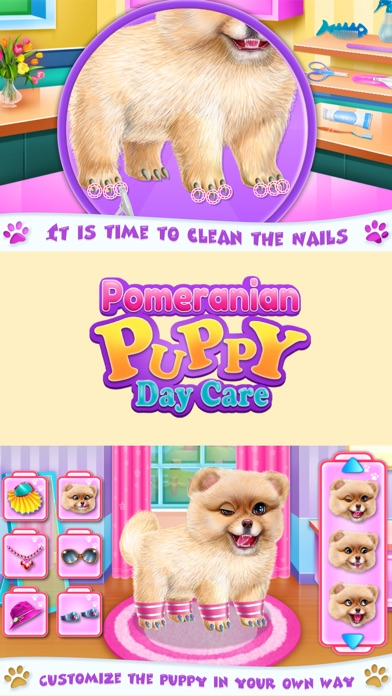 Pomeranian Puppy Day Care Screenshot