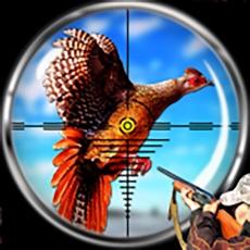 Activities of Pheasant Bird Hunting 3d