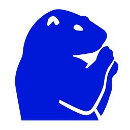 Groundhog Reminder & Alarms