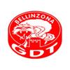 GDT Bellinzona