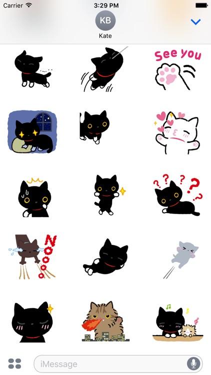 Luna the black cat