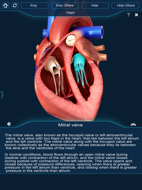 My Heart Anatomy | App Price Drops