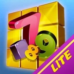 Sudoku Lite:Infinite Puzzles