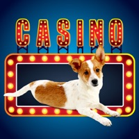 Codes for Lucky Pup Wild Casino Hack