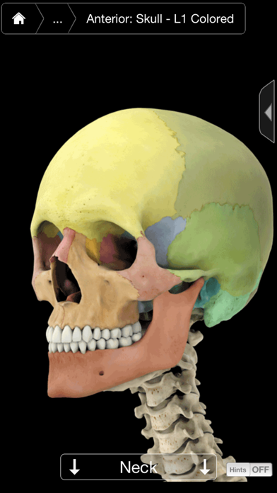 Skeleton System Pro Iii Iphone review screenshots