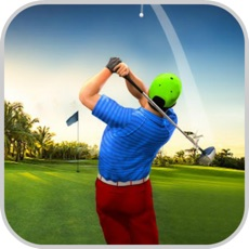 Activities of Golf Ball Shot Experts