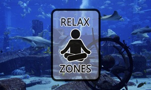 Shark Tank by Relax Zones