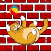 Kitty Cat Funny Game