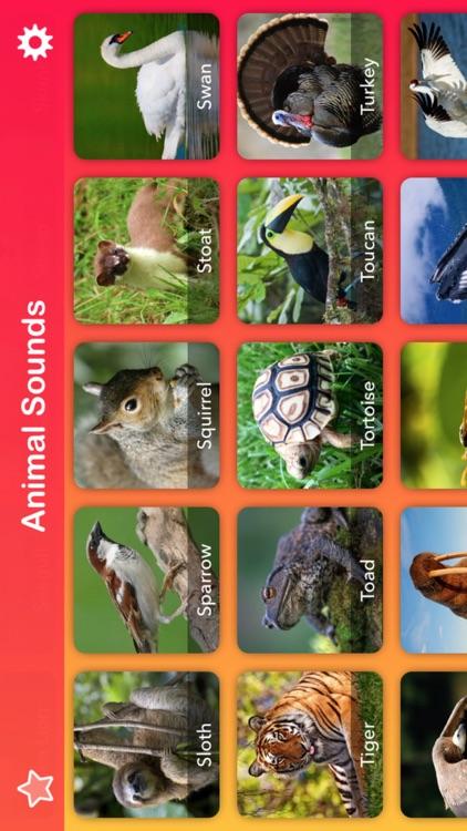 2018 Animal Sounds: Zoo, Growl screenshot-4
