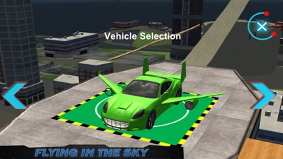 Ex Flying Car Driving screenshot two